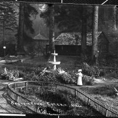 sequoia park 1906.jpg