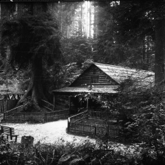 Sequoia park building.jpg